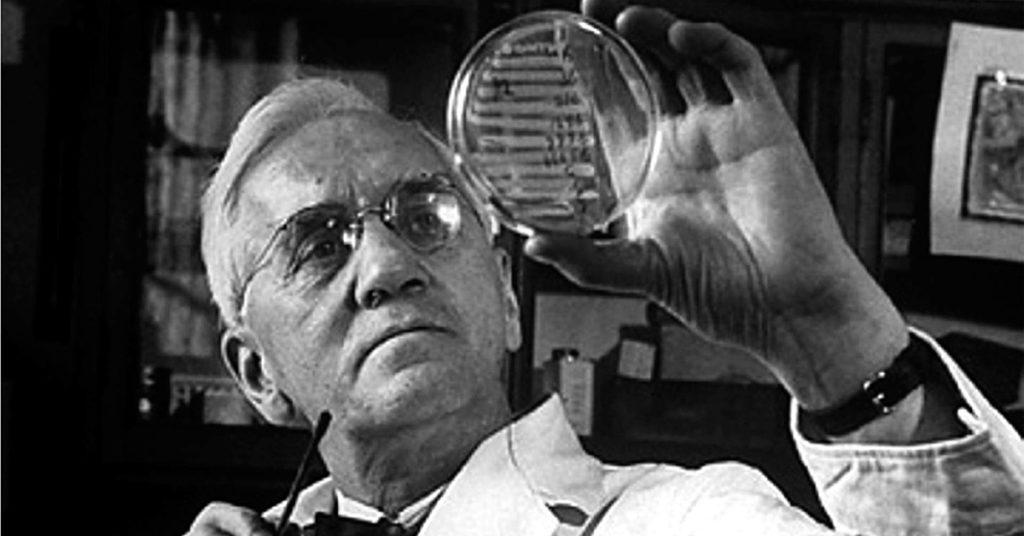 ¿Quién inventó la penicilina y en año? El primer antibiótico 6