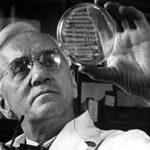 ¿Quién inventó la penicilina y en año? El primer antibiótico 8