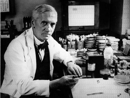 ¿Quién inventó la penicilina y en año? El primer antibiótico 2
