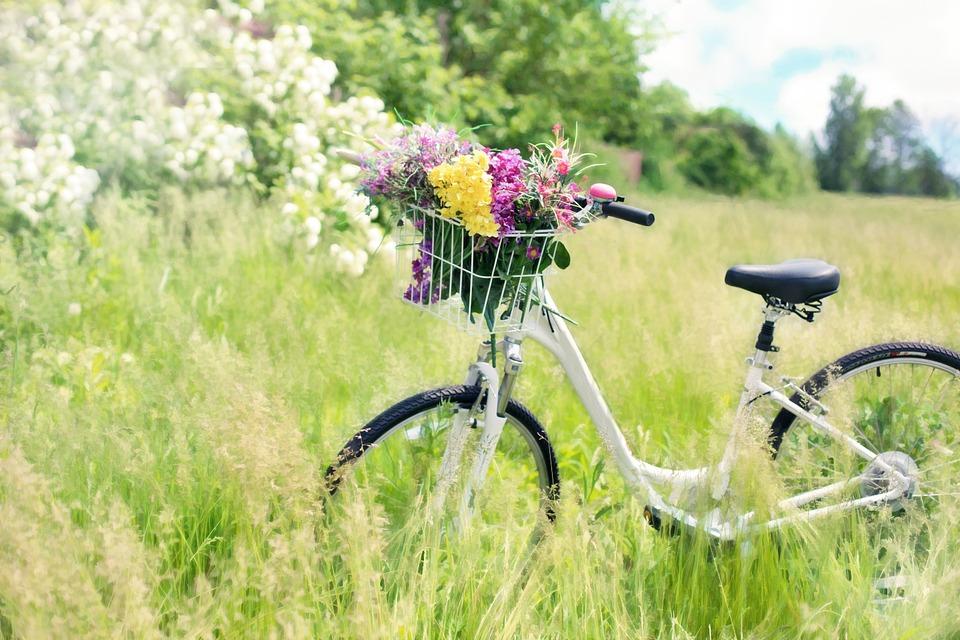 ¿Quién inventó la bicicleta?¿En qué año? Historia 9