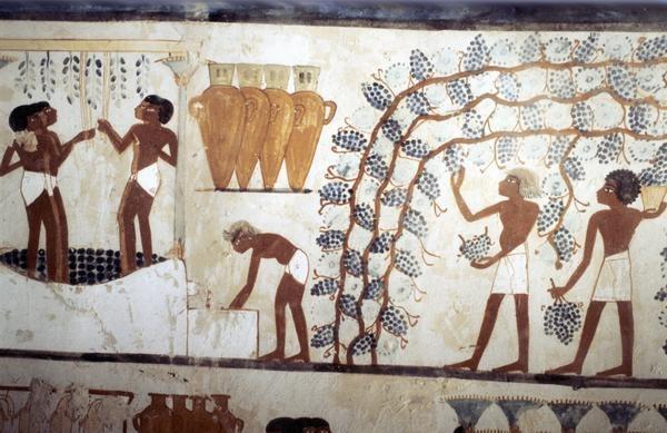¿Quién inventó la cerveza? Historia y Curiosidades 2
