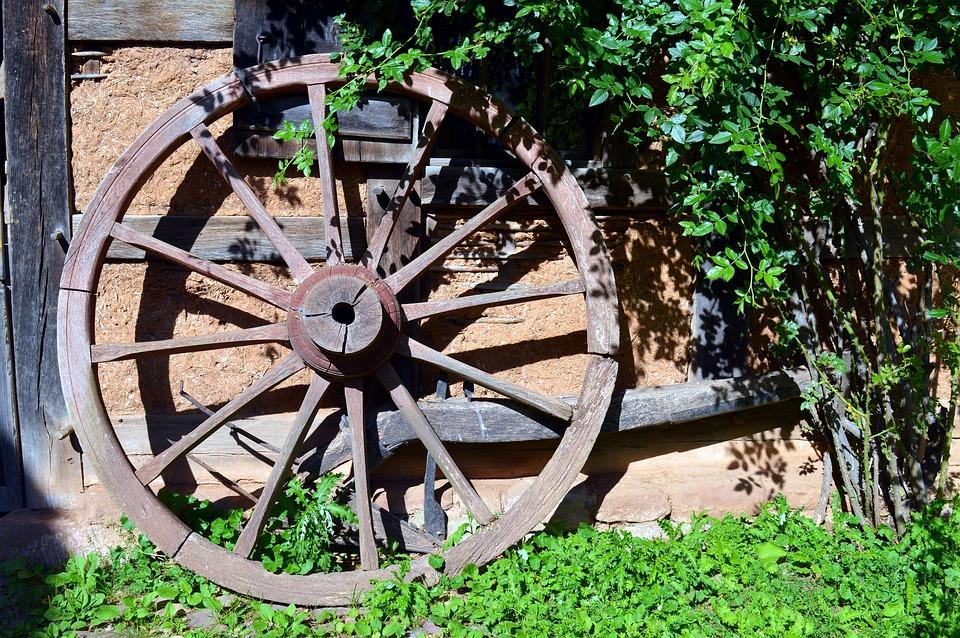 ¿Quién inventó la rueda? Enciclopedia Ilustrada | Curiosidades 3